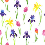 Seamless pattern with watercolor flowers Stock Photography