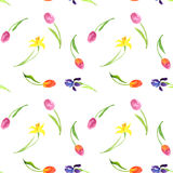 Seamless pattern with watercolor flowers Stock Image