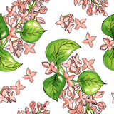 Seamless pattern with watercolor flowers. Vector. Hand drawn. Stock Photos