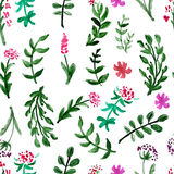 Seamless pattern with watercolor flowers on a white background Stock Images