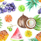 A seamless pattern with the watercolor fruits: grapes, pineapple, coconut, lemon, lime, citrus and other Stock Images
