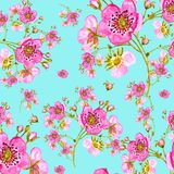 Seamless pattern watercolor gentle spring flowers with buds-5 Design element for greeting cards. And invitations stock illustration