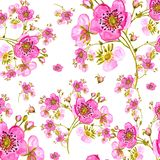 Seamless pattern watercolor gentle spring flowers with buds Design element for greeting cards. And invitations stock illustration