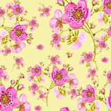 Seamless pattern watercolor gentle spring flowers with buds-7 Design element for greeting cards. And invitations royalty free illustration