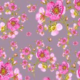 Seamless pattern watercolor gentle spring flowers with buds-2 Design element for greeting cards. And invitations vector illustration