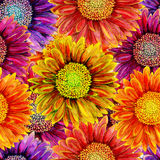 Seamless pattern with watercolor gerbera flower. stock illustration
