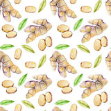 Seamless pattern with watercolor ginger elements Stock Image