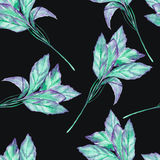 A seamless pattern with the watercolor green basil on a black background Stock Photos