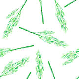A seamless pattern with the watercolor green dill on a white background. A seamless pattern with the isolated green dill, painted hand-drawn in a watercolor on a Stock Photo