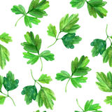 Seamless pattern with watercolor green leaves Stock Image