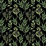 Seamless pattern with watercolor greenery on black stock photo