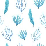 Seamless pattern of watercolor hand-drawn calm seaweeds royalty free illustration