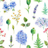 Seamless pattern. Watercolor hydrangea, currant. Stock Photography