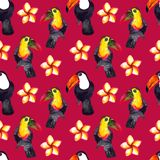Seamless pattern of watercolor hyperrealistic nature of the tropics of Asia - black and white and colored toucans and plumeria stock photography
