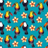 Seamless pattern of watercolor hyperrealistic nature of the tropics of Asia - black and white and colored toucans and plumeria royalty free stock image