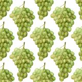 Seamless pattern with green grape Royalty Free Stock Photography