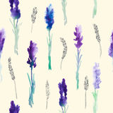 Seamless pattern with Watercolor lavender flowers Royalty Free Stock Images