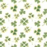 Seamless pattern with watercolor leaves of clover for your design Royalty Free Stock Photos