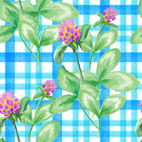 Seamless pattern with watercolor leaves and flowers of clover on checkered background. Seamless pattern with watercolor leaves and flowers of clover on blue Stock Photography