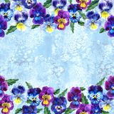 Seamless pattern with Watercolor Violet Flowers Pansy and Leaves on blue background. Botanical watercolor illustration Royalty Free Stock Image