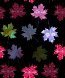 Seamless  pattern with watercolor maple leaves. Royalty Free Stock Photo