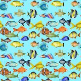 Seamless pattern with watercolor oceanic tropical exotic fishes. Hand painted on a blue background vector illustration