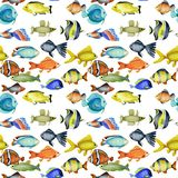 Seamless pattern with watercolor oceanic tropical exotic fishes stock illustration