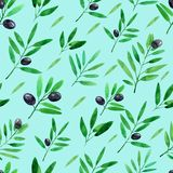 Seamless pattern with watercolor olive branches. Hand drawn illustration.  royalty free illustration