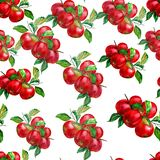 Seamless pattern with watercolor painted apples vector illustration