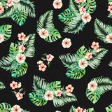 Seamless pattern with watercolor palm and monstera leaves, exotic pink flowers. Hand painted on a dark background Royalty Free Stock Photography