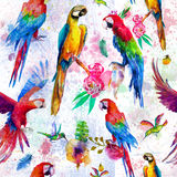 Seamless pattern with watercolor parrots Stock Photo