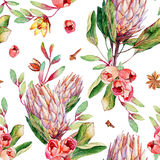 Seamless pattern with watercolor pink protea and roses. Stock Images
