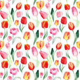 Seamless pattern of watercolor pink, red and yellow tulips. Stock Photos