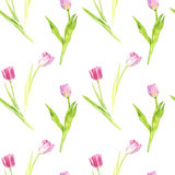 Seamless pattern with watercolor pink tulips Royalty Free Stock Photo