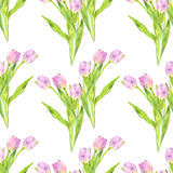 Seamless pattern with watercolor pink tulips Stock Image