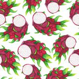 Seamless pattern with watercolor pitaya. Tropical fruits. Exotic pattern royalty free illustration