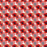 Seamless pattern with watercolor poppies Stock Image
