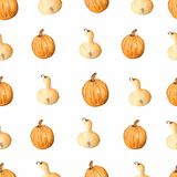 Seamless pattern with watercolor pumpkin.Thanksgiving day background. It`s perfect for your design. vector illustration