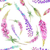 Seamless pattern with the watercolor purple lupine flowers and abstract mimosa flowers Royalty Free Stock Photo