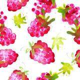 Seamless pattern of watercolor raspberry Royalty Free Stock Image
