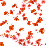 Seamless pattern watercolor red flowers on a white background Stock Photo