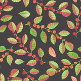 A seamless pattern with the watercolor red and orange berries on the branches with leaves on a dark background Royalty Free Stock Image