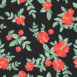 Seamless pattern watercolor of red rose and green leaves on black, hand painted  plant illustration for fashion textile. Seamless pattern watercolor of red rose royalty free illustration