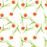 Seamless pattern with watercolor red tulips Stock Images