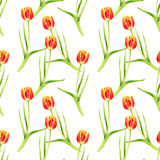 Seamless pattern with watercolor red tulips Stock Photo