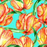 A seamless pattern with the watercolor red and yellow tulips Stock Photo