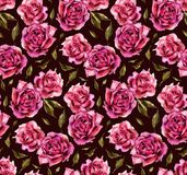 Seamless pattern with watercolor roses on black background Stock Images