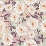 Seamless   pattern of watercolor roses. Endless texture for your design Royalty Free Stock Photo