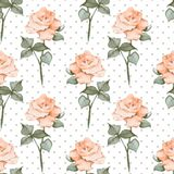 Seamless pattern with watercolor roses. Polka dots. Background 05. Hand drawn watercolor seamless pattern Royalty Free Stock Images