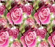 Seamless pattern with watercolor roses Royalty Free Stock Images
